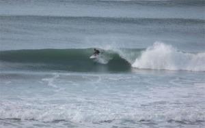 B surfers previs