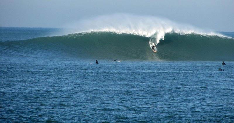 surf sur la cote atlantique - parlementia guethary