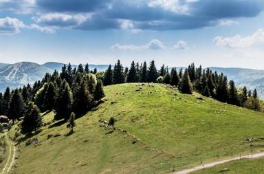Plus belles randos des Vosges