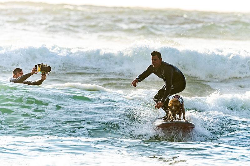 surf en mediterranee