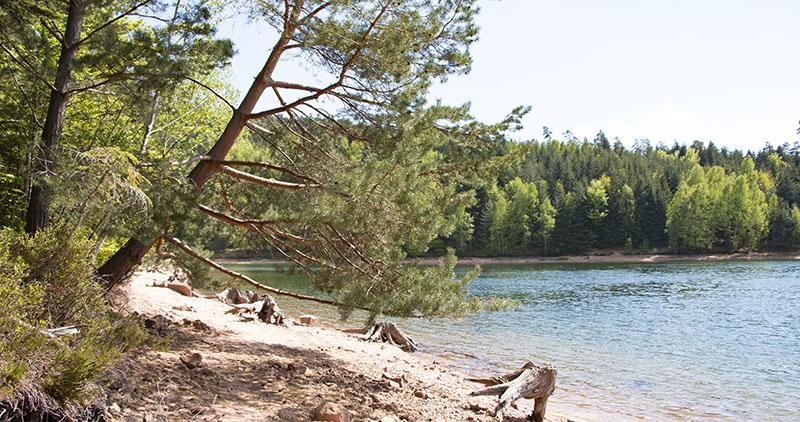 balade vosges - Lac de Pierre Percée