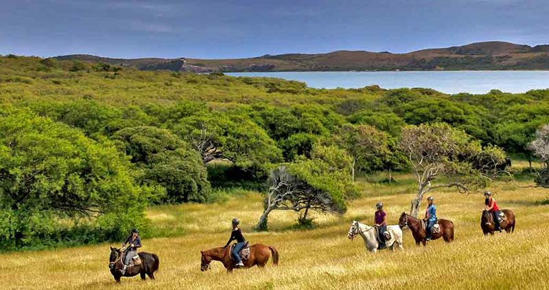 équitation Nouvelle-Caledonie