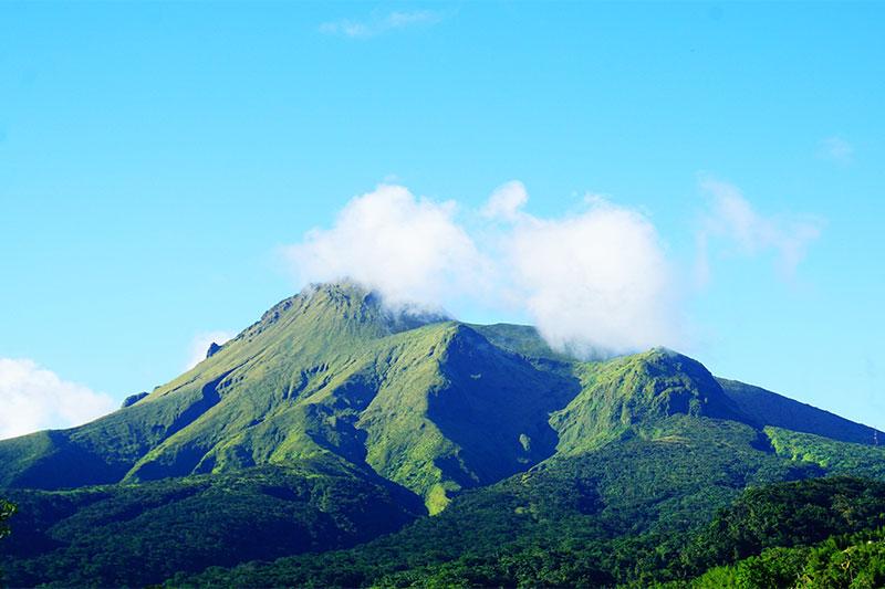 Montagne Pélée, incontournable randonnée Martinique