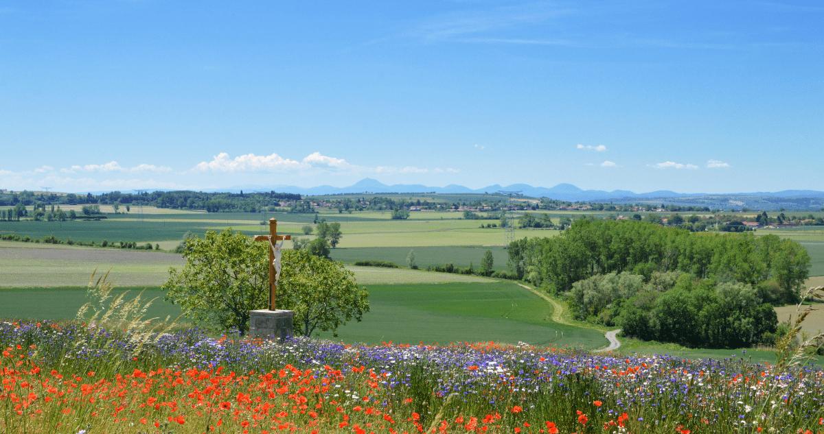 Auvergne champ randonnée